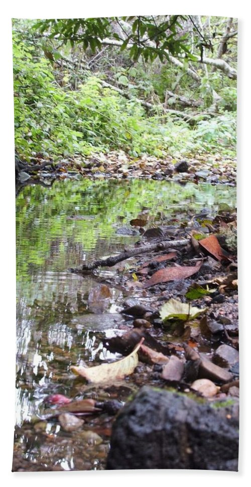 Woods Hand Towel featuring the photograph Reflection by Shari Chavira