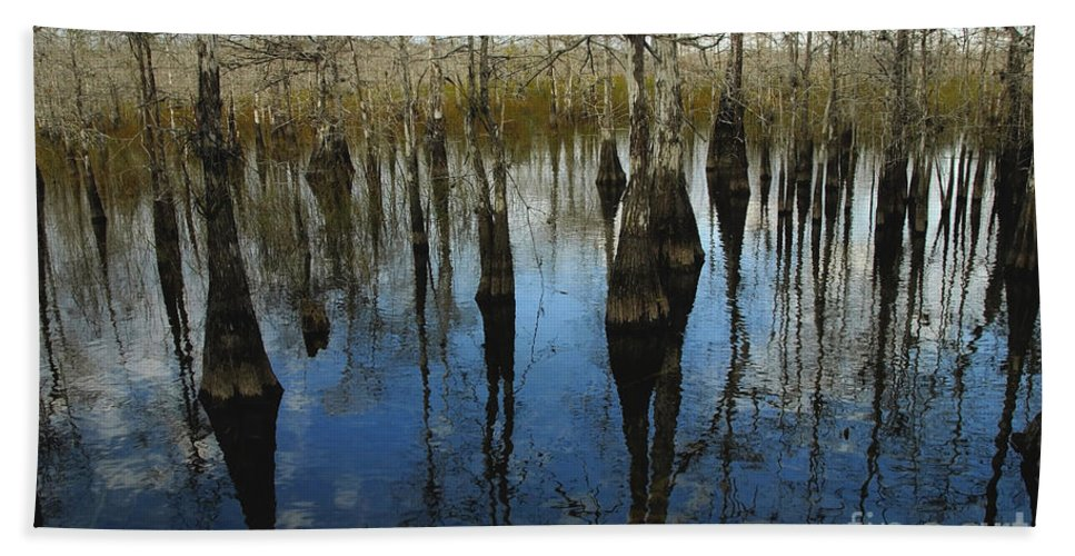 Bald Cypress Trees Hand Towel featuring the photograph Reflections At Big Cypress by David Lee Thompson