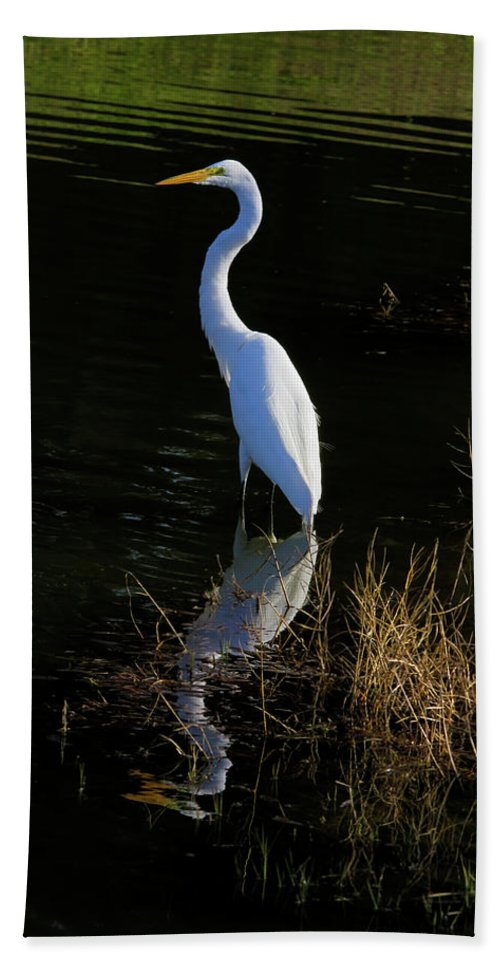 Giant Egret Hand Towel featuring the photograph Reflections Of Beauty by Deborah Benoit