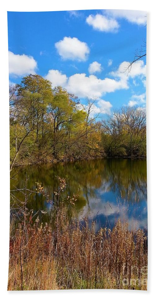 Colored Grasses Bath Sheet featuring the photograph Reflective Cloudy Palatine, Il, Library Pond by Jane Butera Borgardt