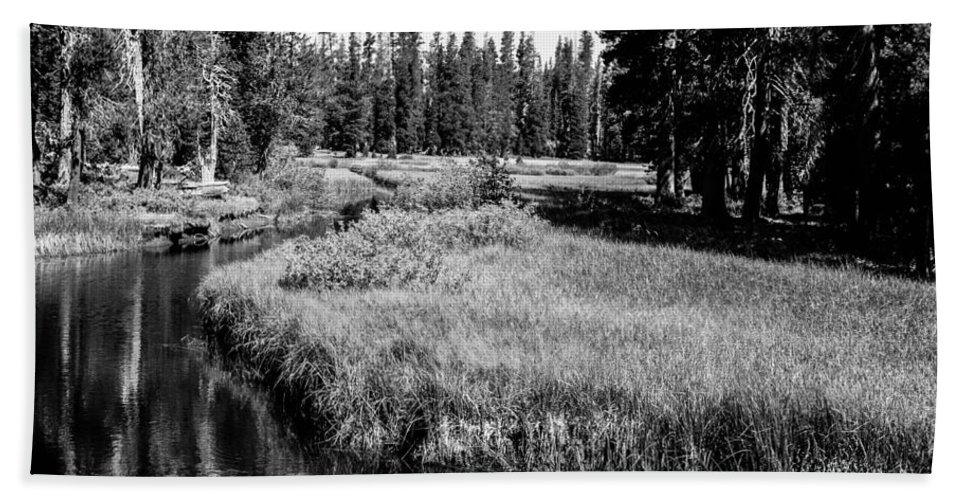 Wrights Lake Hand Towel featuring the photograph Reflective Creek by Misty Tienken