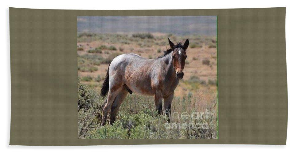 Wild Horse Bath Sheet featuring the photograph Refuge by Abby Ocker