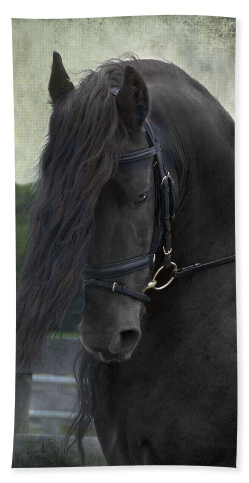 Horses Hand Towel featuring the photograph Remme by Fran J Scott
