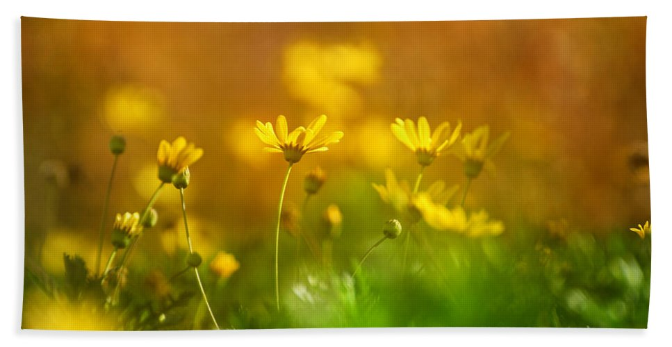 Flower Bath Sheet featuring the photograph Renacemos by Guido Montanes Castillo