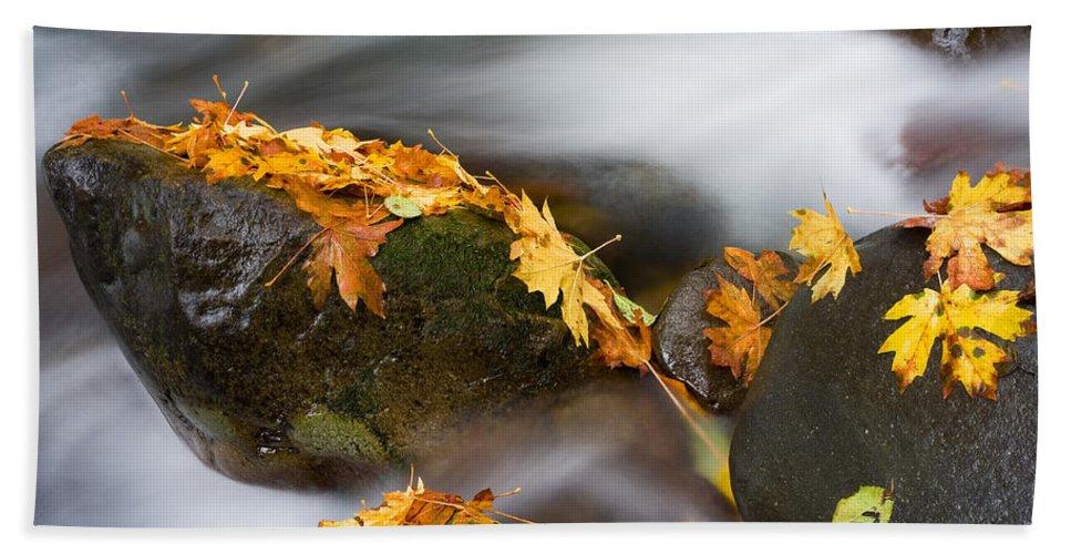 Autumn Bath Sheet featuring the photograph Respite by Mike Dawson