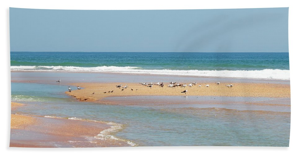 Beach Bath Sheet featuring the photograph Resting Seagulls On A Sandbar by Daniel Caracappa