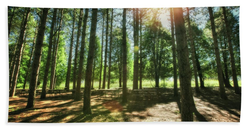 Wisconsin Landscape Hand Towel featuring the photograph Retzer Nature Center Pine Trees by Jennifer Rondinelli Reilly - Fine Art Photography