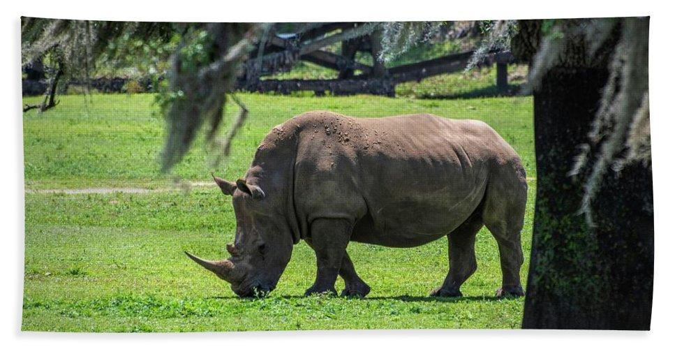 Rhinoceros Hand Towel featuring the photograph Rhinoceros by Jan Mulherin