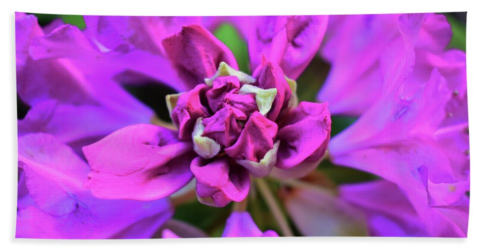 Rhododendron Bath Sheet featuring the photograph Rhododendron by Tiffany Serijna
