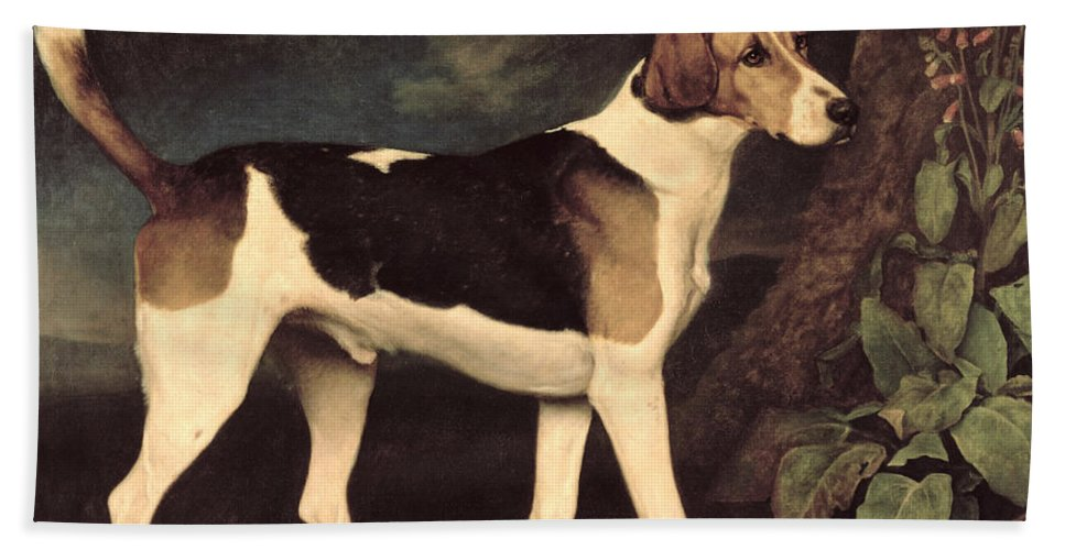 George Stubbs Bath Sheet featuring the painting Ringwood by George Stubbs