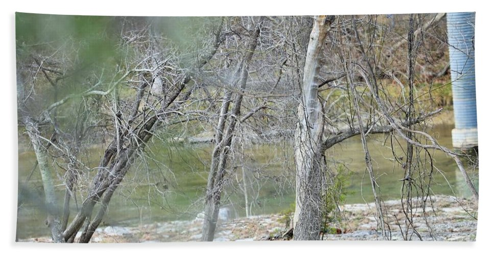 Bath Sheet featuring the photograph River008 by Jeff Downs