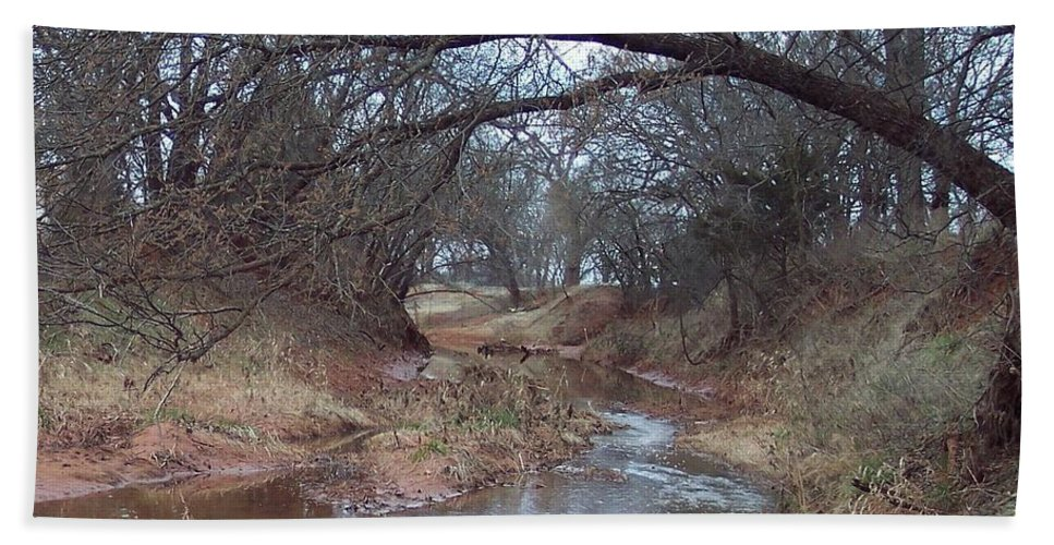 Landscapes Bath Towel featuring the photograph Rivers Bend by Shari Chavira