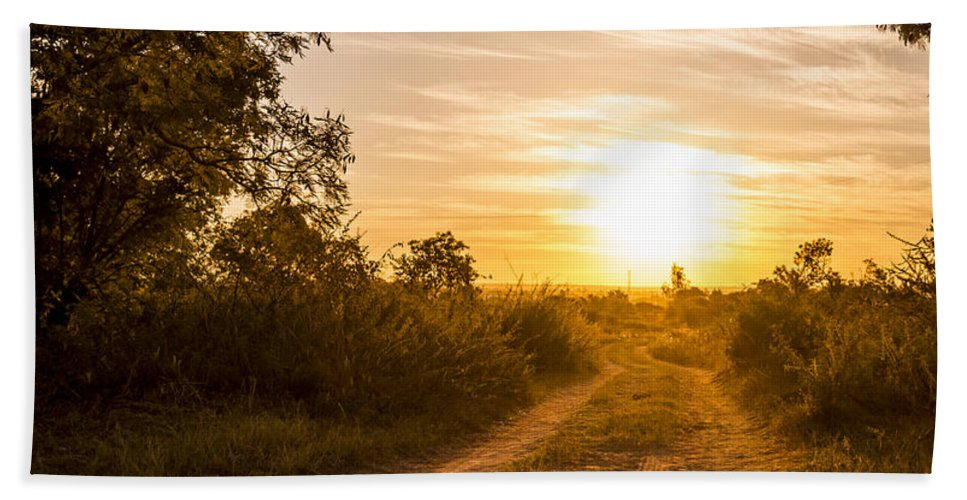 Africa Hand Towel featuring the photograph Road In Botswana by Tim Hester