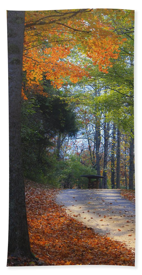 Cabin Hand Towel featuring the photograph Road To Cabin 2 by Teresa Mucha