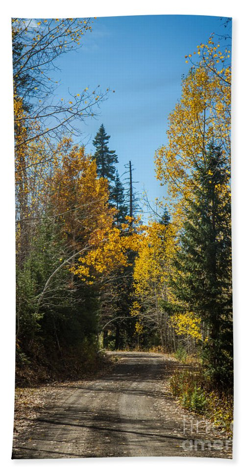 Autumn Hand Towel featuring the photograph Road To Fall Colors by Robert Bales