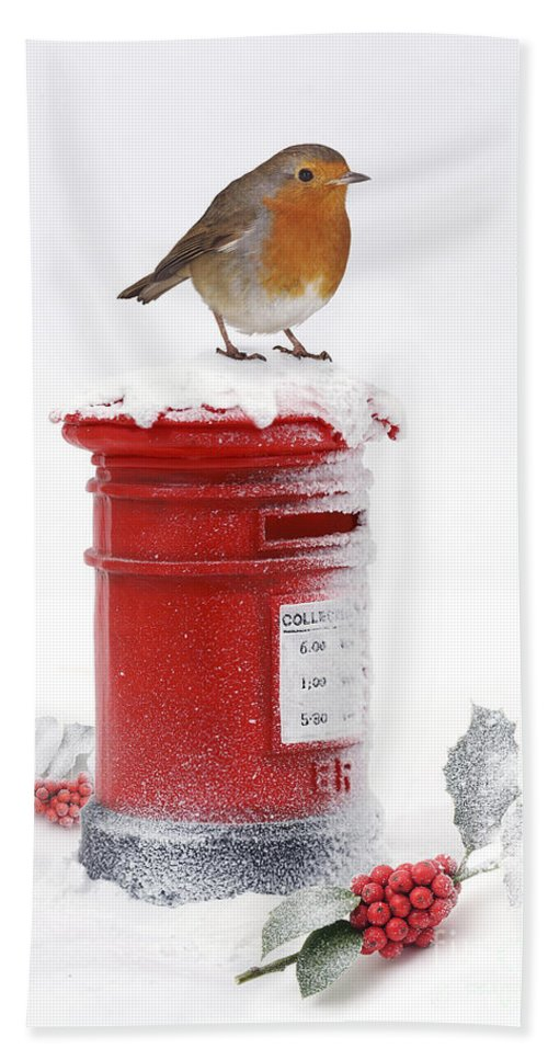 Robin Hand Towel featuring the photograph Robin And Postbox by Warren Photographic