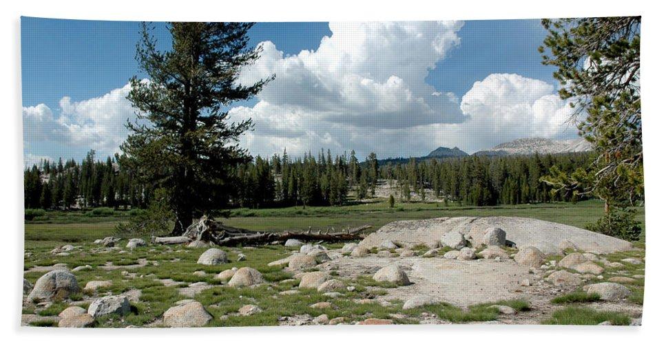 Usa Bath Sheet featuring the photograph Rocks Of Tuolumne Meadows by LeeAnn McLaneGoetz McLaneGoetzStudioLLCcom