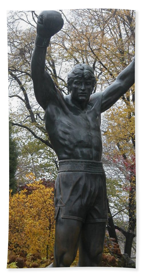 Nature Hand Towel featuring the photograph Rocky In The Fall by Jan Gilmore