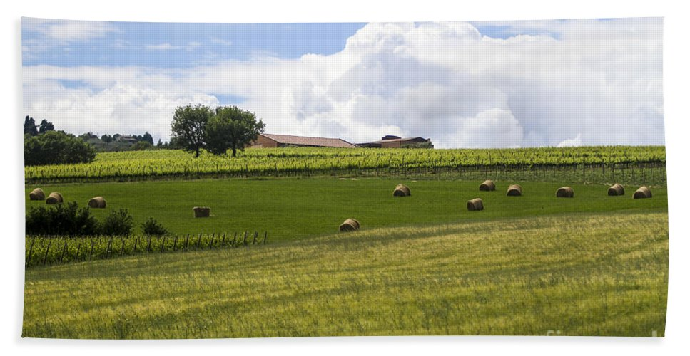 Green Bath Sheet featuring the photograph Rolling Green Hills With Trees by Vladi Alon