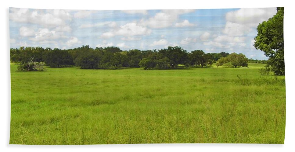Blue Sky Hand Towel featuring the photograph Rolling Pasture by D Hackett