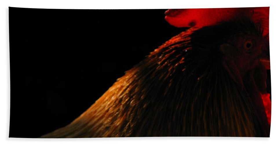 Rooster Bath Sheet featuring the photograph Rooster by Amanda Barcon