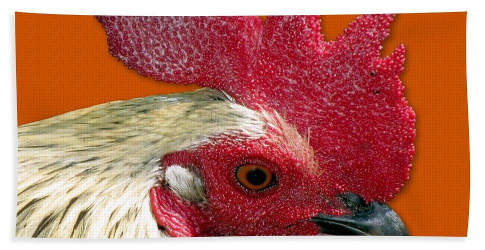 Rooster Hand Towel featuring the photograph Rooster by Bob Slitzan