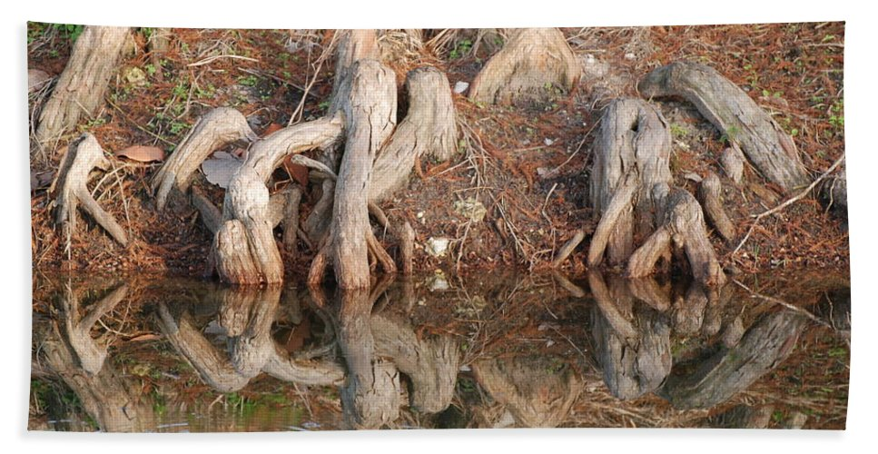 Roots Hand Towel featuring the photograph Rooted Reflections by Rob Hans