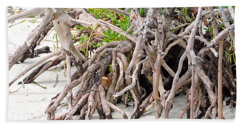 Mangrove Trees Hand Towel featuring the photograph Roots by Marilee Noland