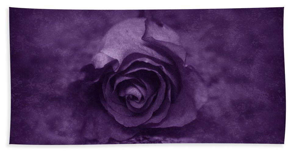 Purple Hand Towel featuring the photograph Rose - Purple by Angie Tirado