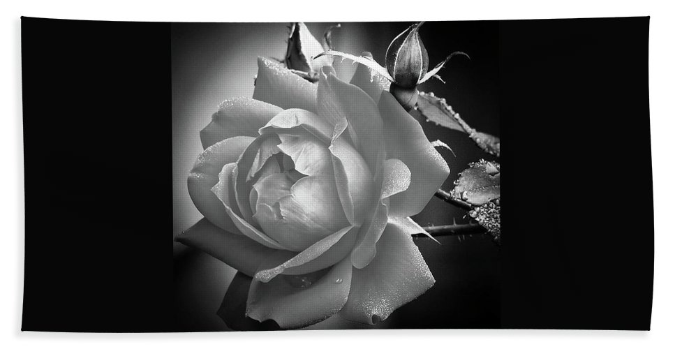 Rose Bath Sheet featuring the photograph Rose In Black And White by Joseph Hamner
