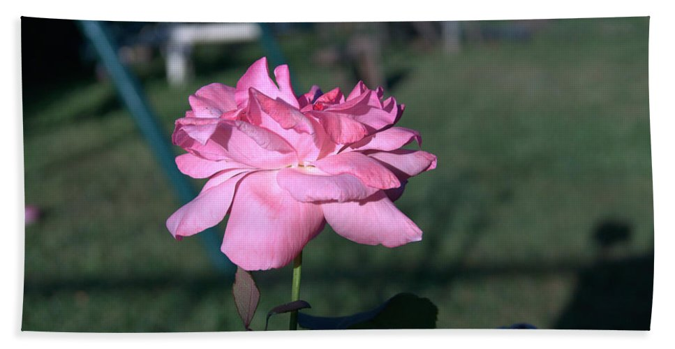 Rose Hand Towel featuring the photograph Rose by Jasmin Hrnjic