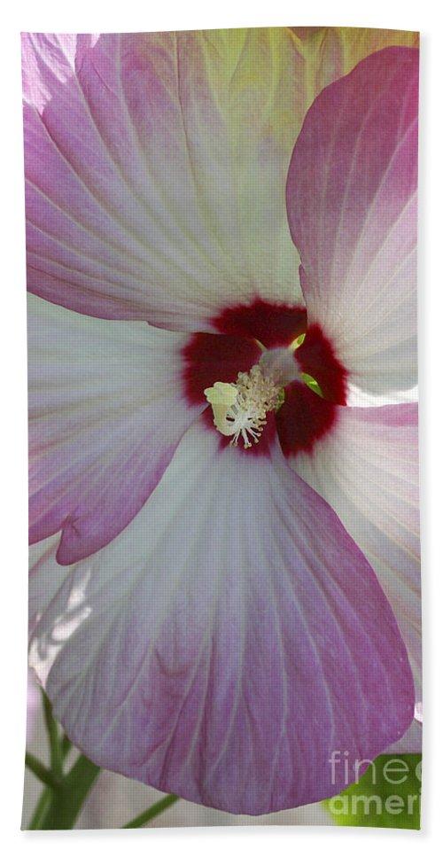 Flower Hand Towel featuring the photograph Rose Of Sharon by Deborah Benoit