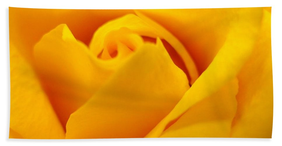 Rose Bath Sheet featuring the photograph Rose Yellow by Rhonda Barrett