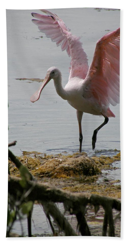 Roseate Spoonbill Hand Towel featuring the photograph Roseate Wave by Kimberly Mohlenhoff