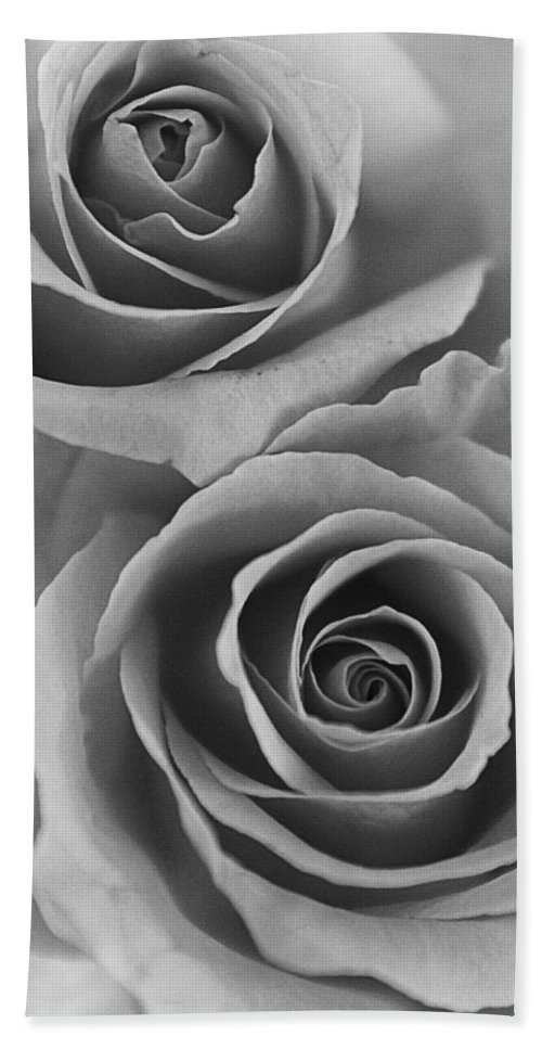 Roses Hand Towel featuring the photograph Roses Black And White by Jill Reger