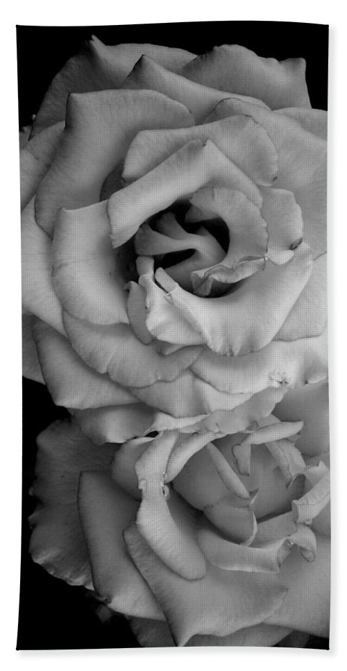 Black And White Hand Towel featuring the photograph Roses In Black And White by LKB Art and Photography