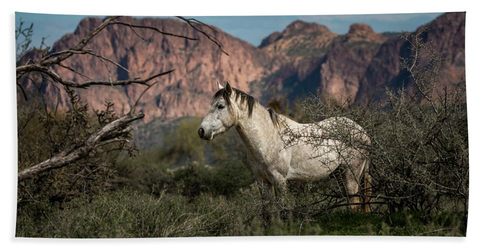 Wild Horses Bath Sheet featuring the photograph Rough, Proud, And Free by Randy Heidenreich