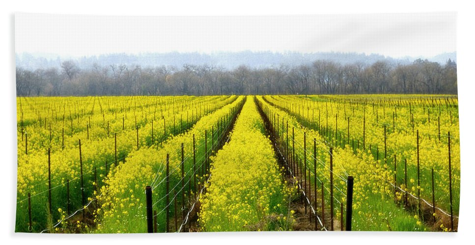 Mustard Hand Towel featuring the photograph Rows Of Wild Mustard by Tom Reynen