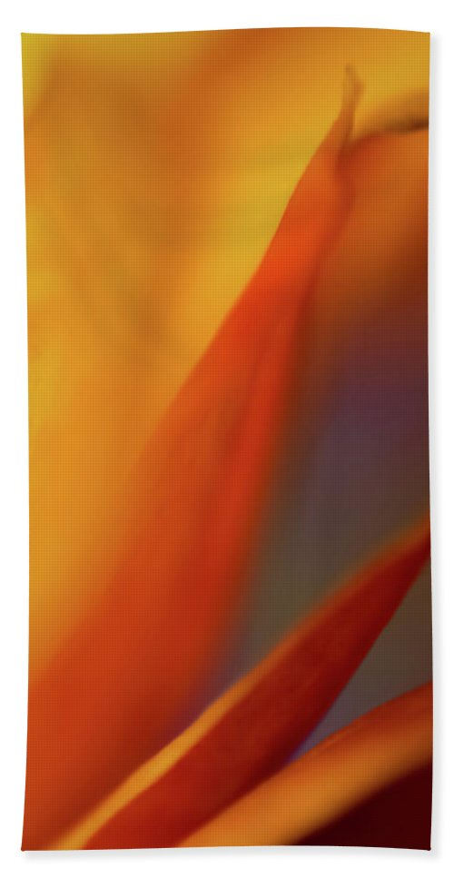 Abstract Bath Sheet featuring the photograph Royal by Ilka B