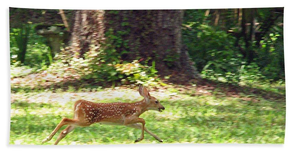 Deer Hand Towel featuring the photograph Run Bambi Run by Peg Urban