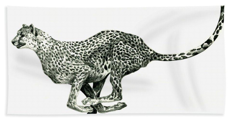 Nature Hand Towel featuring the drawing Running Cheetah by Shirley Heyn