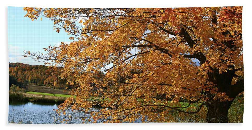 Rural Bath Sheet featuring the photograph Rural Autumn Country Beauty by Deborah Benoit