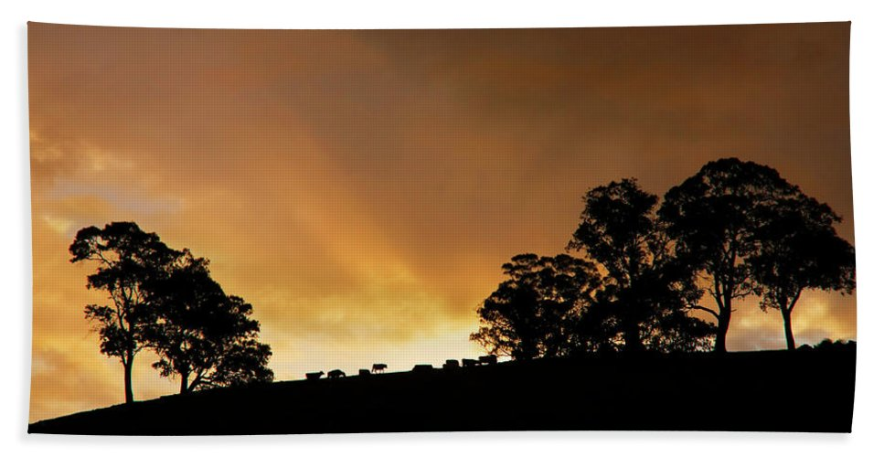 Sunset Bath Towel featuring the photograph Rural Glory by Mike Dawson