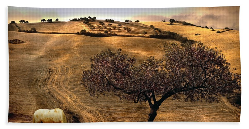 Landscape Bath Towel featuring the photograph Rural Spain View by Mal Bray