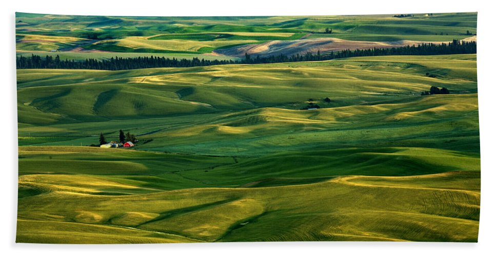 Palouse Hills Hand Towel featuring the photograph Rural Tapestry by Mike Dawson
