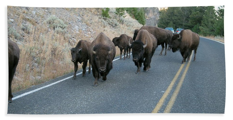 Bison Bath Sheet featuring the photograph Rush Hour by Michael Peychich