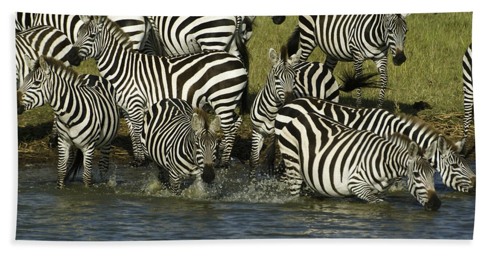 Africa Hand Towel featuring the photograph Rush To Water by Michele Burgess