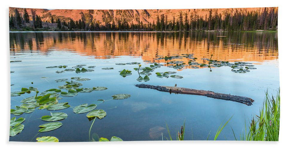 Trailsxposed Bath Sheet featuring the photograph Ruth Lake Lilies by Gina Herbert