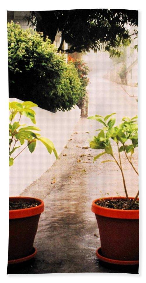 Saba Bath Towel featuring the photograph Saba by Ian MacDonald