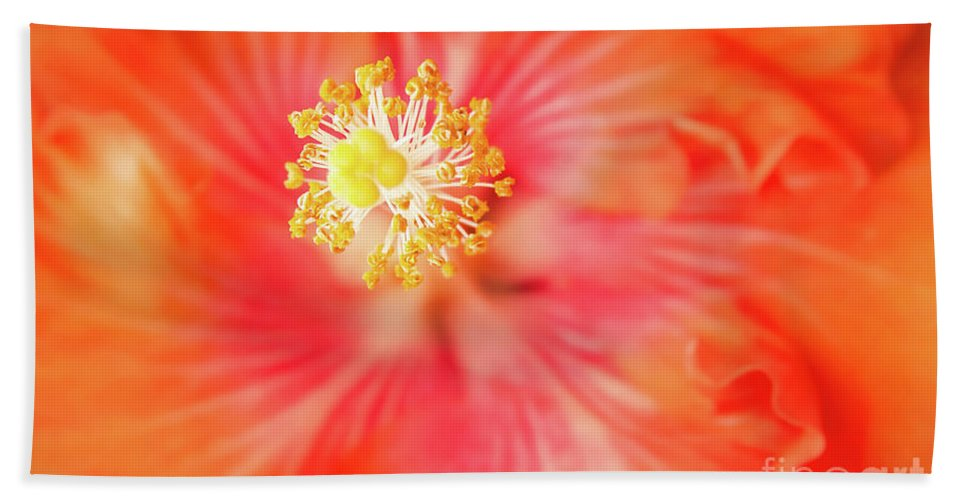 Hibiscus Bath Towel featuring the photograph Sacred Song by Sharon Mau